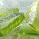 L'aloe vera dans l'industrie de la beauté – une solution anti-âge